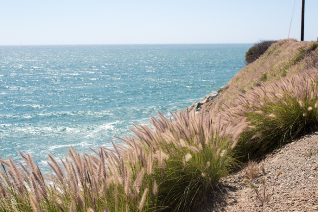 malibu beach 3